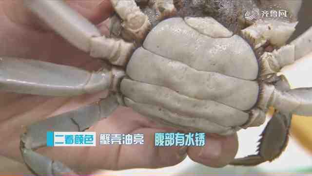 《生活大求真》:三招选螃蟹,保证膏黄肉又肥!