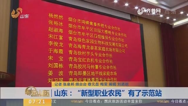 """山东:""""新型职业农民""""有了示范站"""