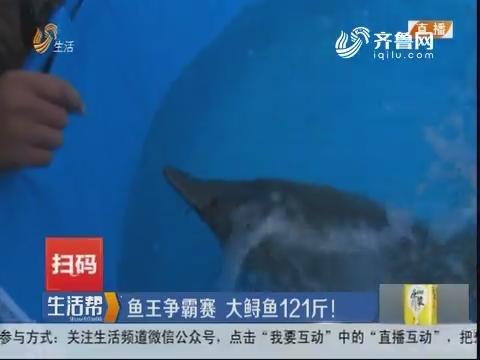 淄博:鱼王争霸赛 大鲟鱼121斤!