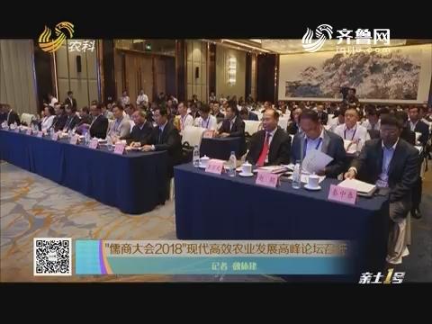 """""""儒商大会2018""""现代高效农业发展高峰论坛召开"""