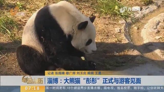 """【闪电希望排行榜】淄博:大熊猫""""彤彤""""正式与游客见面"""