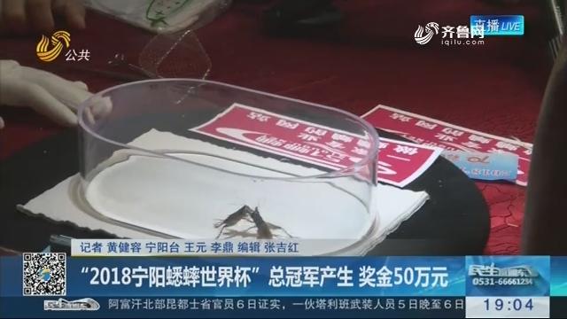 """""""2018宁阳蟋蟀世界杯""""总冠军产生 奖金50万元"""