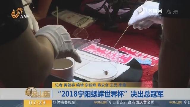 """""""2018宁阳蟋蟀世界杯""""决出总冠军"""