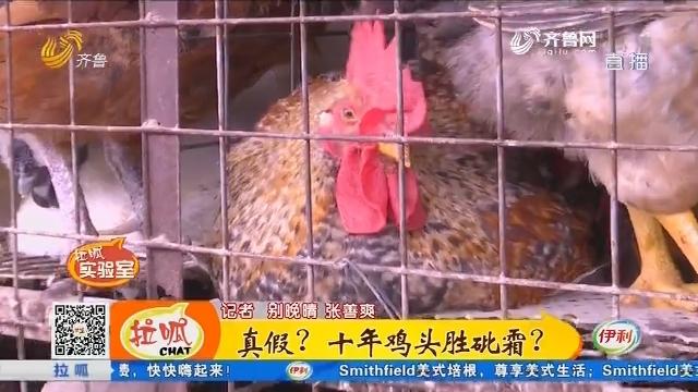 【拉呱实验室】真假?十年鸡头胜砒霜?