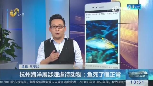 【新说法】杭州海洋展涉嫌虐待动物:鱼死了很正常