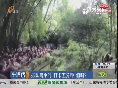 潍坊:排队两小时 打卡五分钟 值吗?