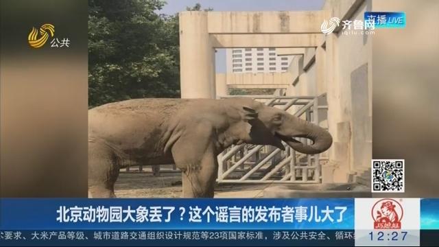 【闪电新闻客户端】北京动物园大象丢了?这个谣言的发布者事儿大了