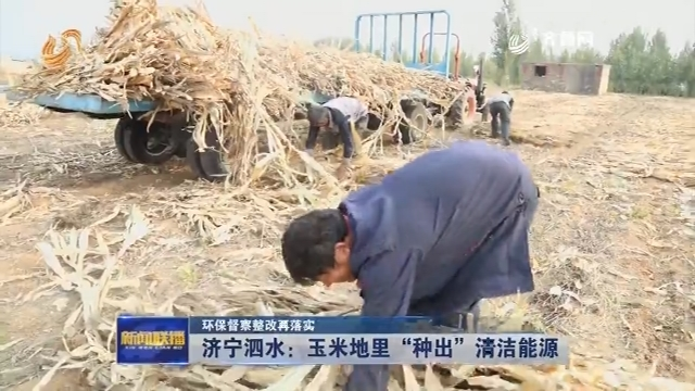 """【环保督察整改再落实】济宁泗水:玉米地里""""种出""""清洁能源"""