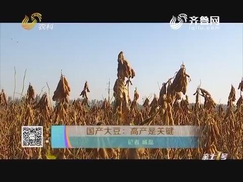 国产大豆:高产是关键