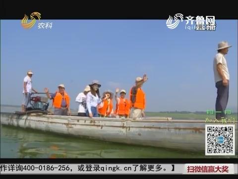 【旅养中国】山东泗水之行