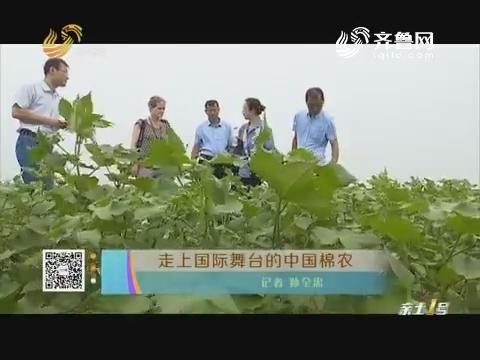 走上国际舞台的中国棉农