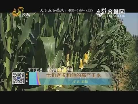 【天下五谷·果蔬保姆在行动】七旬老汉和他的高产玉米