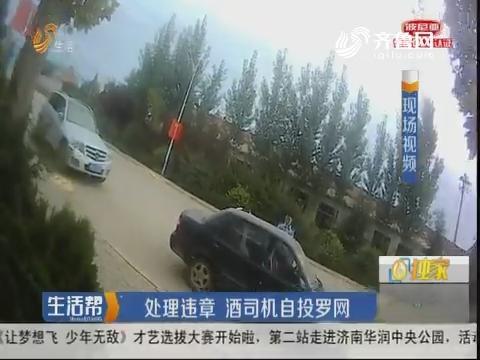 潍坊:处理违章 酒司机自投罗网