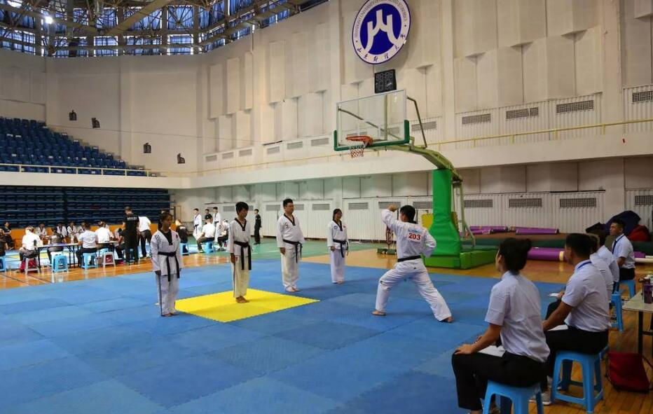 山东省跆拳道职业技能竞赛在济南举行