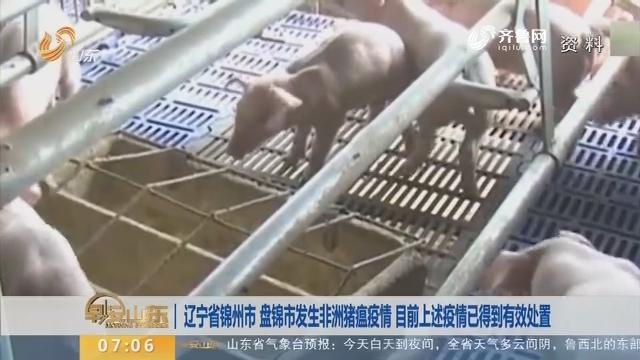 辽宁省锦州市 盘锦市发生非洲猪瘟疫情 目前上述疫情已得到有效处置