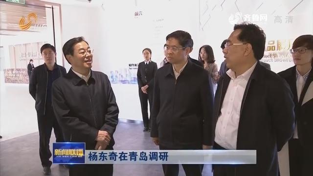 杨东奇在青岛调研
