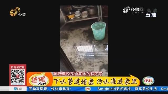济南:下水管道堵塞 污水灌进家里