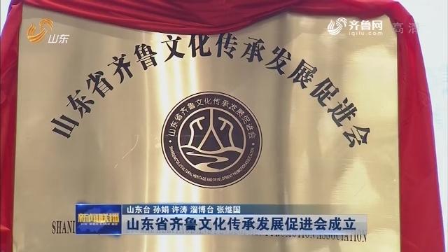 山东省齐鲁文化传承发展促进会成立