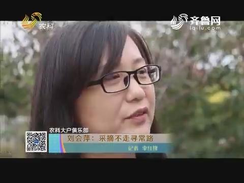 【农科大户俱乐部】刘会萍:采摘不走寻常路