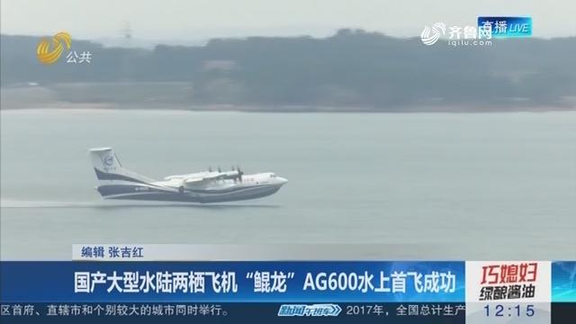 """国产大型水陆两栖飞机""""鲲龙""""AG600水上首飞乐成"""