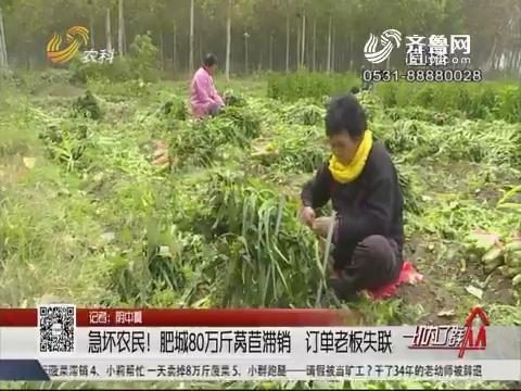 急坏农民!肥城80万斤莴苣滞销 订单老板失联