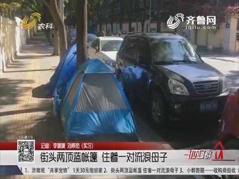 济南:街头两顶蓝帐篷 住着一对流浪母子