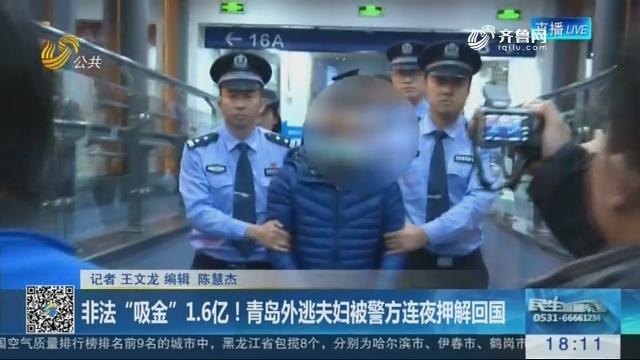 """非法""""吸金""""1.6亿!青岛外逃夫妇被警方连夜押解回国"""