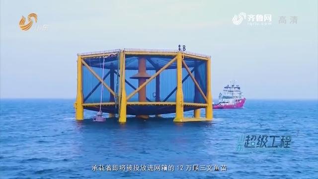 【闪电新闻排行榜】山东超级工程之挺进深蓝