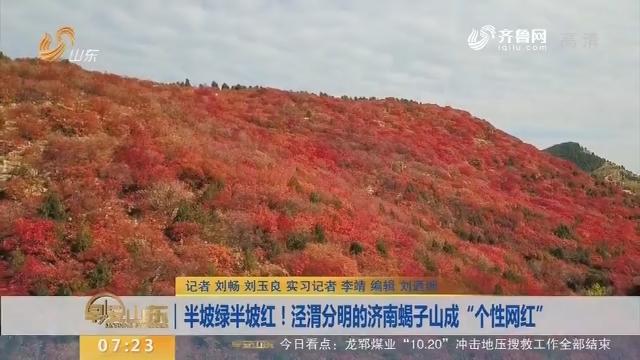 """半坡绿半坡红!泾渭分明的济南蝎子山成""""个性网红"""""""