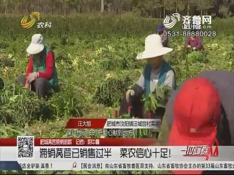 【肥城莴苣滞销追踪】滞销莴苣已销售过半 菜农信心十足!