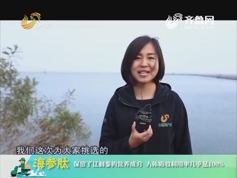 20181102《中国原产递》:海参肽