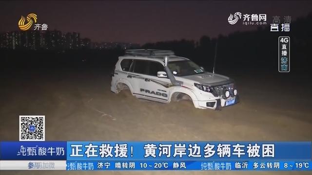 【4G直播】济南:正在救援!黄河岸边多辆车被困