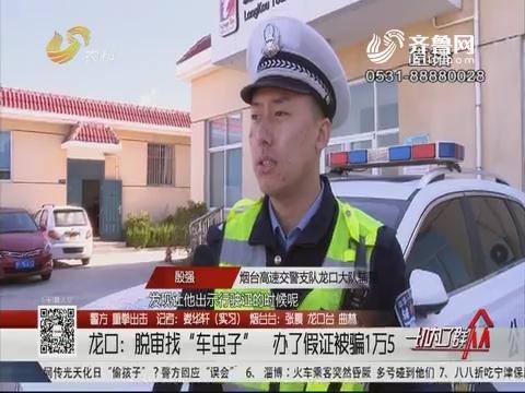 """【警方 重拳出击】龙口:脱审找""""车虫子"""" 办了假证被骗1万5"""
