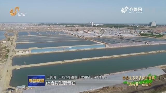 """【中央生态环境保护督察""""回头看""""在山东】日照东港:近海养殖绿色转型"""