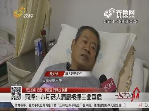 【民生热点】菏泽:六旬老人清晨被撞生命垂危