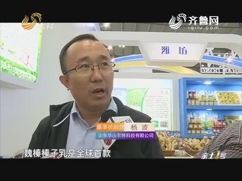 """【聚焦第十六届中国国际农产品交易会】""""坚果之王""""大变身"""