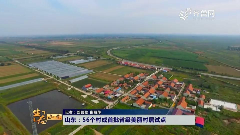 山东:56个村成首批省级美丽村居试点