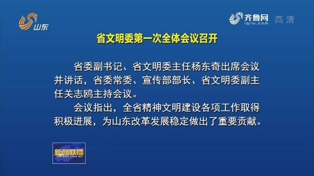 省文明委第一次全体会议召开