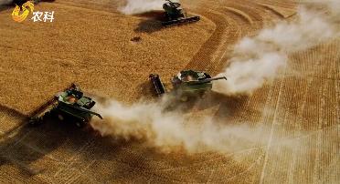 宋洪远:推进农业高质量发展