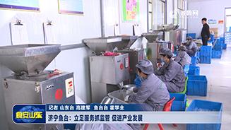 济宁鱼台:立足服务抓监管 促进产业发展