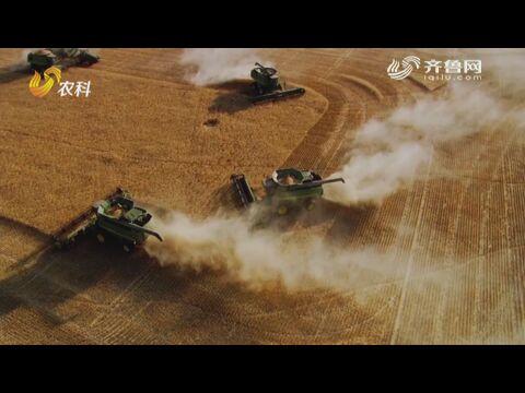 赵振东:给农业插上科技的翅膀