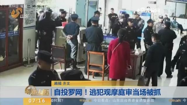 【闪电新闻排行榜】自投罗网!逃犯观摩庭审当场被抓