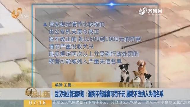 【闪电新闻排行榜】武汉物业管理新规:遛狗不戴嘴套可罚千元 屡教不改纳入失信名单