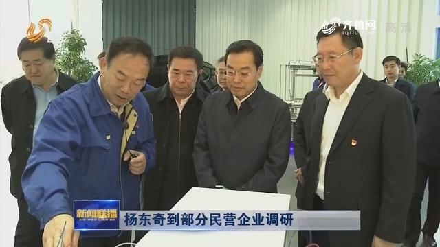 杨东奇到部分民营企业调研