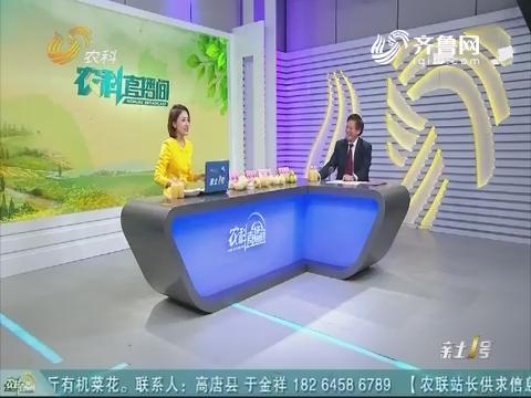 20181118《农科直播间》:山农酥梨——上风新种类助力墟落复兴