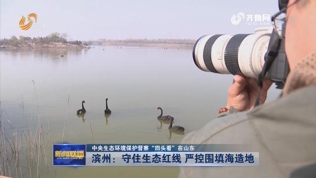 """【中央生态环境保护督察""""回头看""""在山东】滨州:守住生态红线 严控围填海造地"""