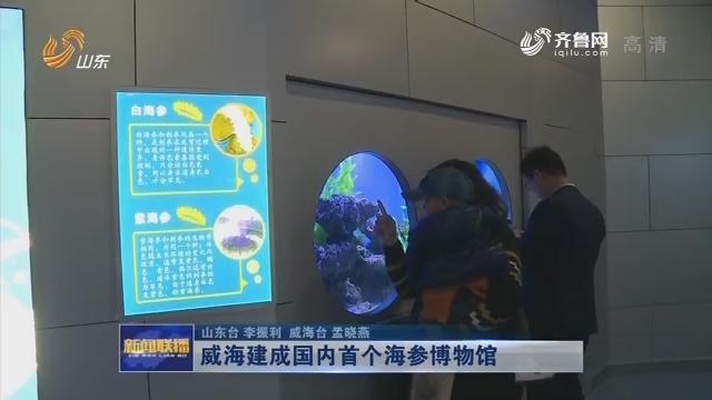 威海建成国内首个海参博物馆
