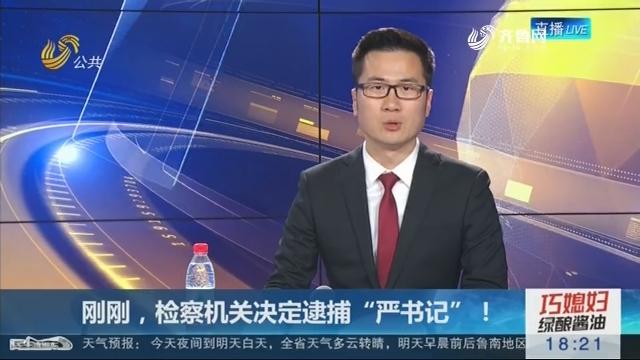 """刚刚,检察机关决定逮捕""""严书记""""!"""