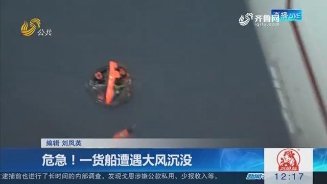 危急!一货船遭遇大风沉没
