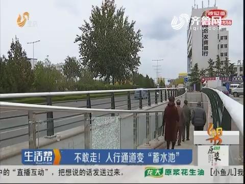 """潍坊:不敢走!人行通道变""""蓄水池"""""""